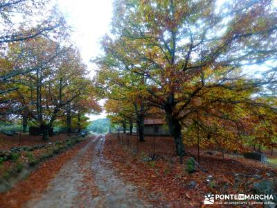 Senda Viriato; Sierra San Vicente; viajes aventura baratos agencias de viaje en madrid senderismo al